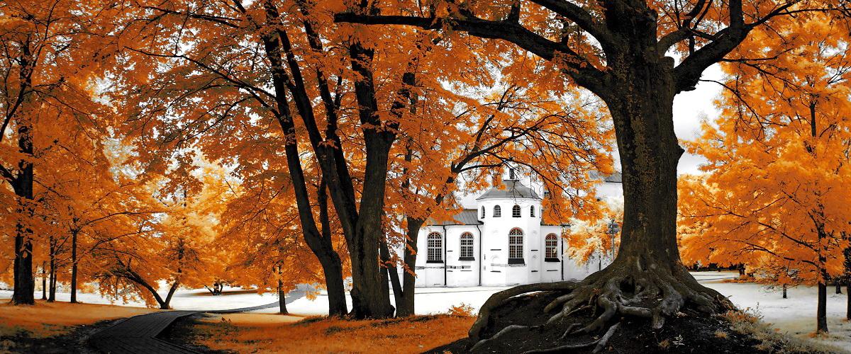Осенние экскурсии